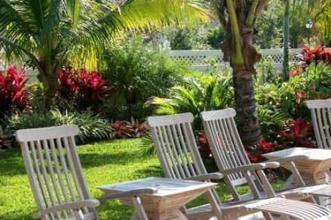 Landscape Design In Fort Lauderdale Florida Broward County
